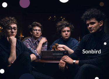 Sonbird | koncert #LatonaPradze