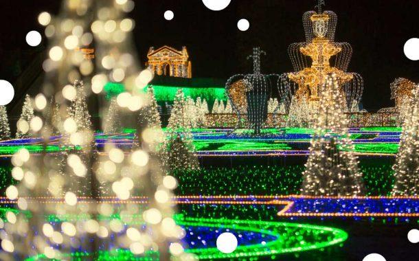 Królewski Ogród Światła 2020/2021 | wystawa plenerowa