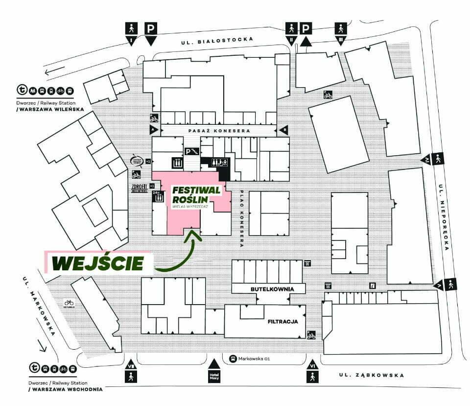 Festiwal Roślin Warszawa mapa
